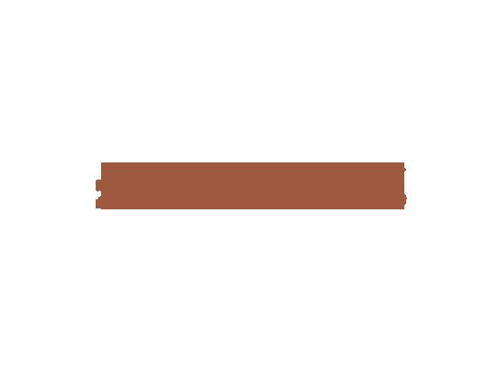 Zurbaines Inc. logo